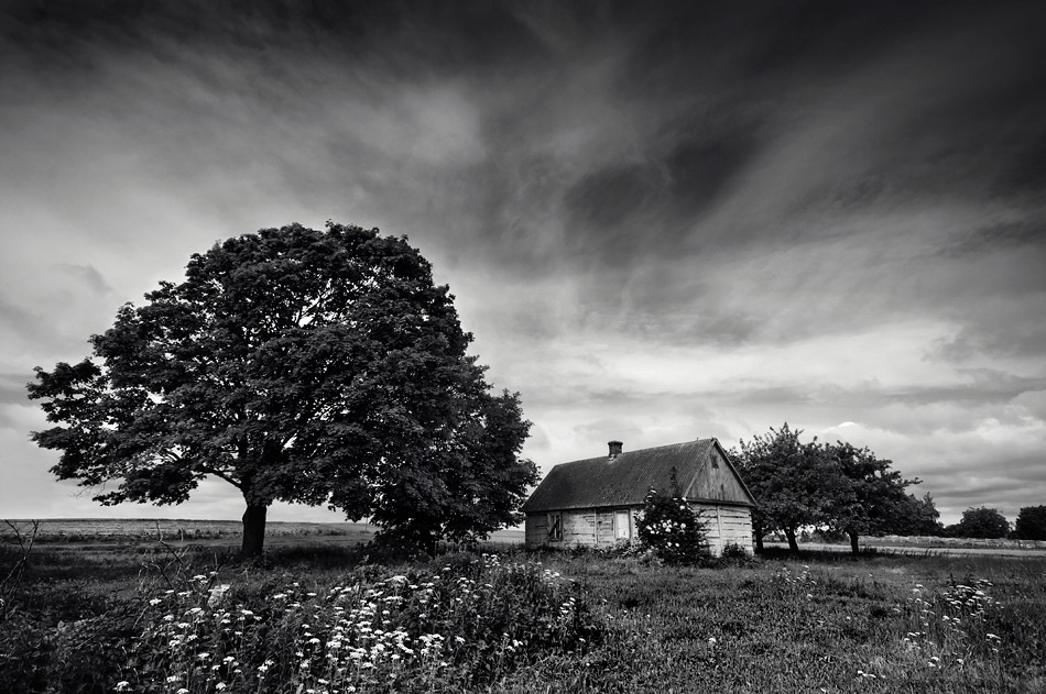 A piece of fine art art photography titled Hermitage by Piotr Cichosz