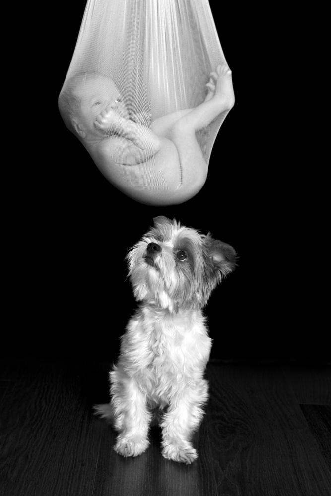 A piece of fine art art photography titled Untitled by Lukasz Tokarski