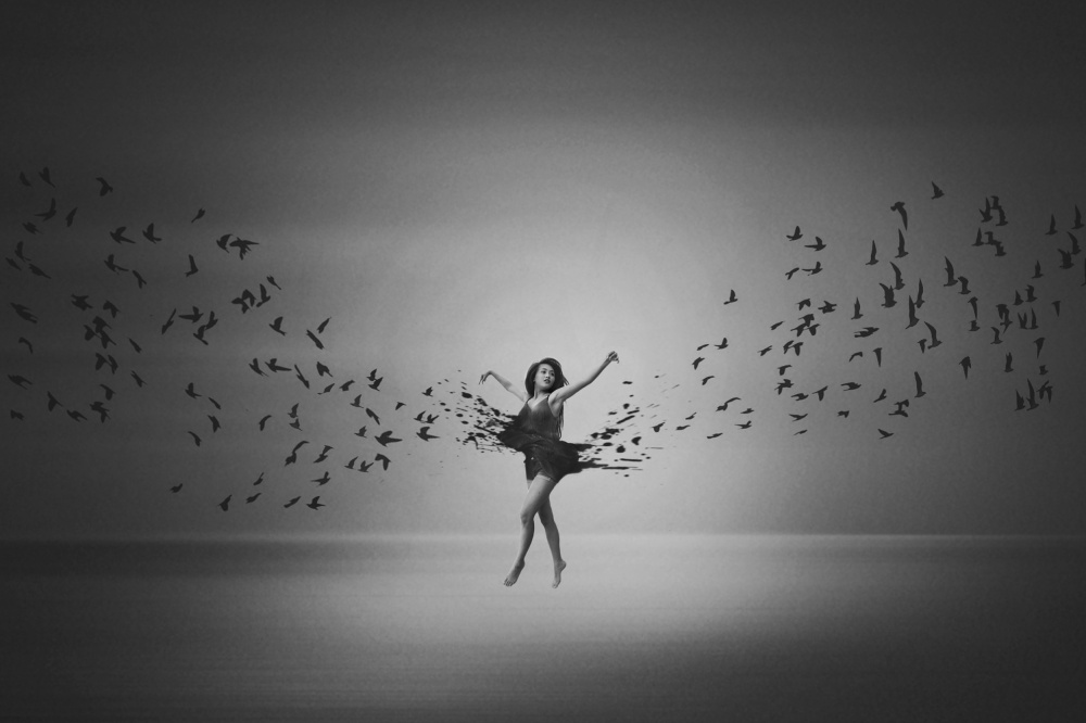 Ballerina flight of Birds