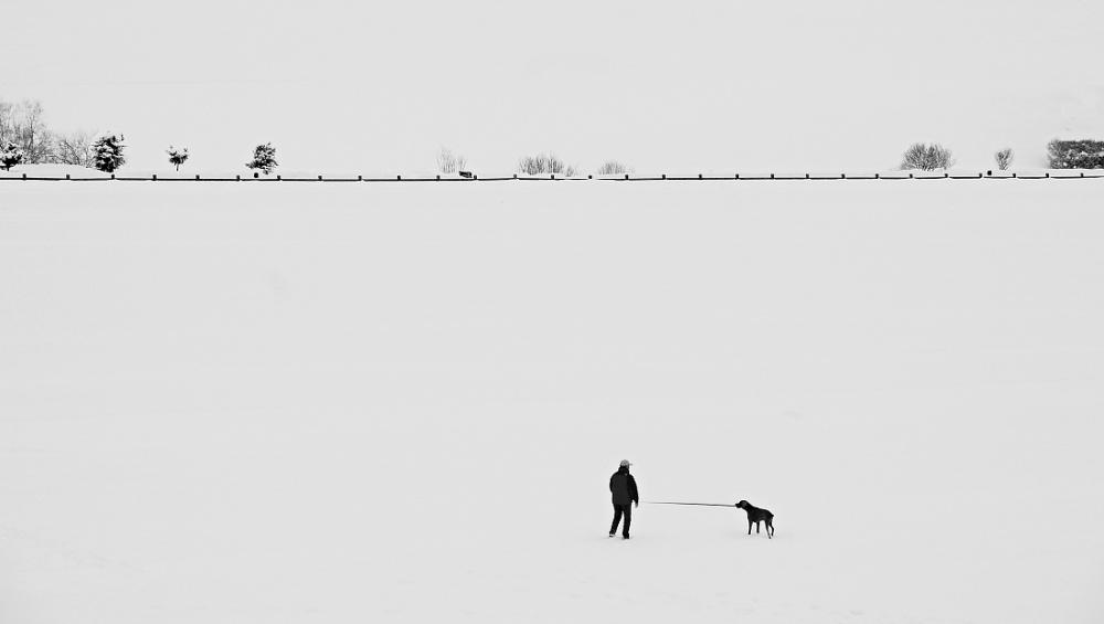 A piece of fine art art photography titled Micro Svět by Milena Vaníčková