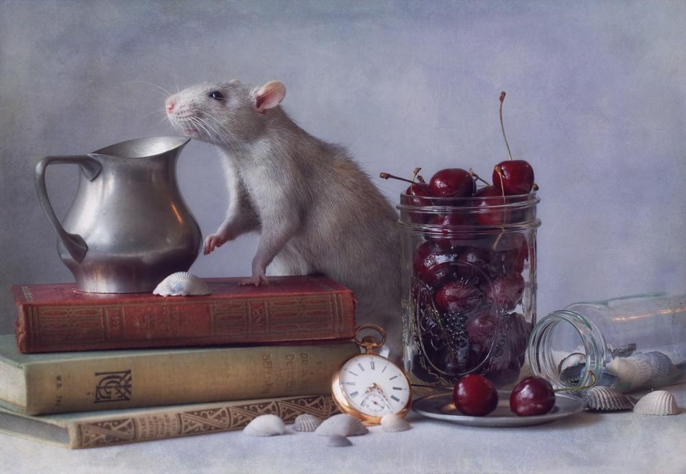 A piece of fine art art photography titled Cherries by Ellen van Deelen