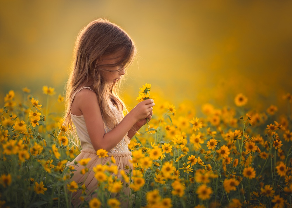 A piece of fine art art photography titled Golden Daydreams by Lisa Holloway