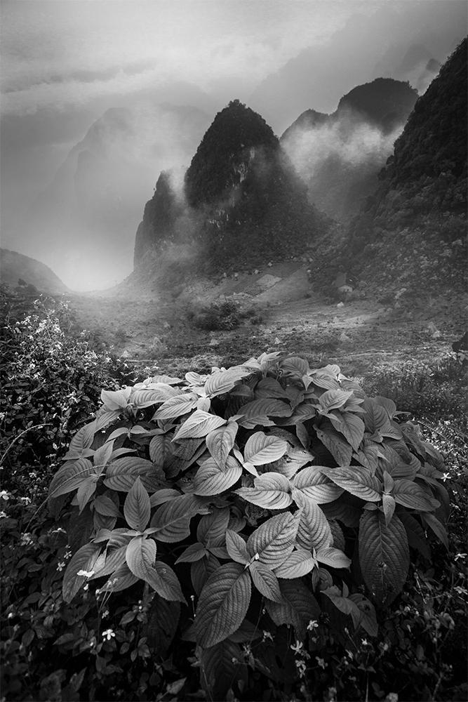 A piece of fine art art photography titled Untitled by Siarhei Mikhaliuk *