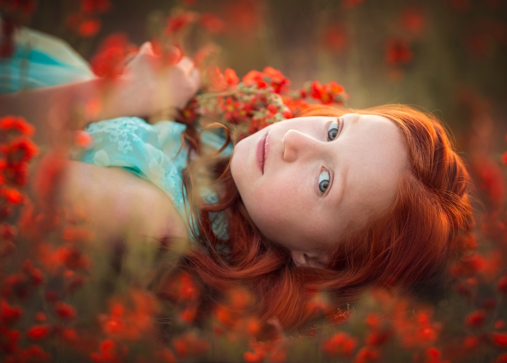A piece of fine art art photography titled Field of Dreams by Lisa Holloway