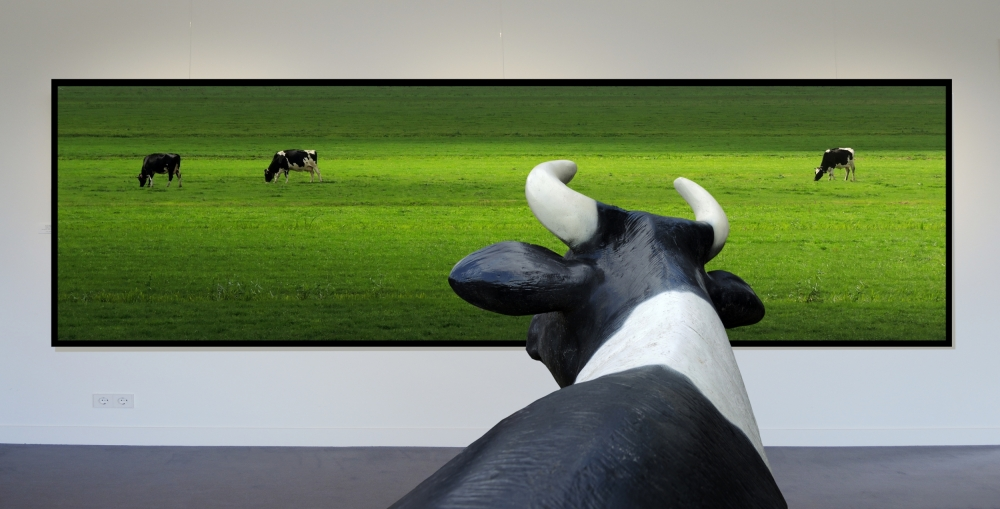 A piece of fine art art photography titled My Wish: I Was Grazing There Myself! by Huib Limberg