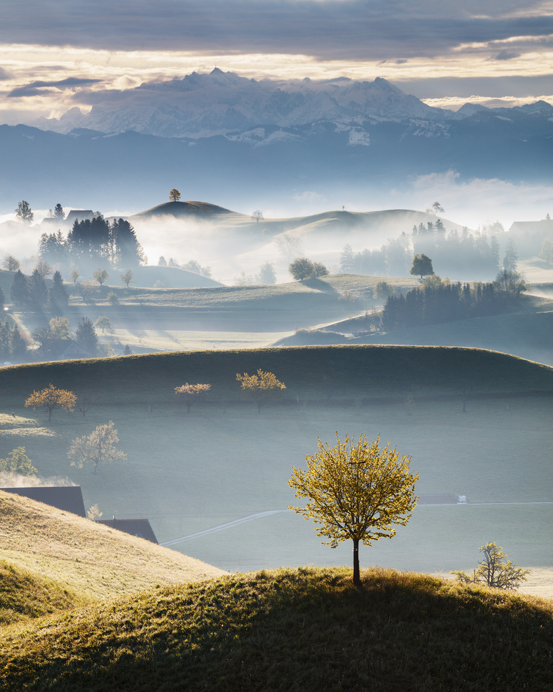 A piece of fine art art photography titled Misty Morning In the Shire by Martin Rak