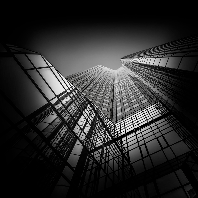 A piece of fine art art photography titled Look Up by Joachim Bruederl