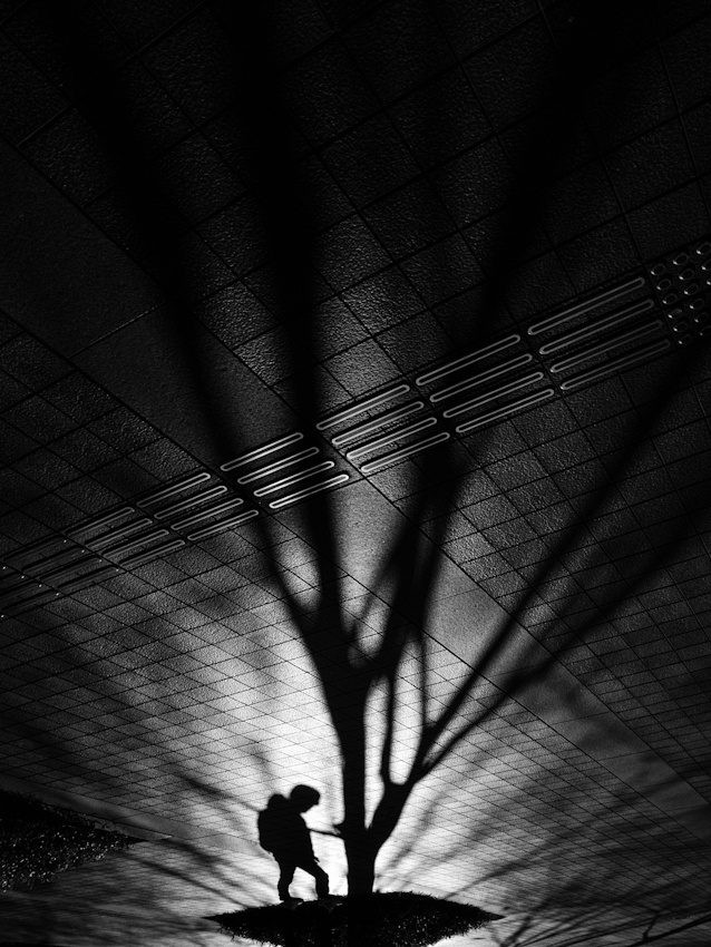 A piece of fine art art photography titled Robinson by Yusuke Sakai