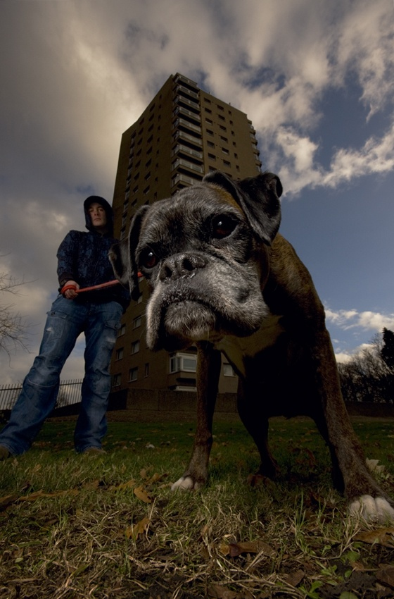 A piece of fine art art photography titled Hoodie and Dog by simondeg