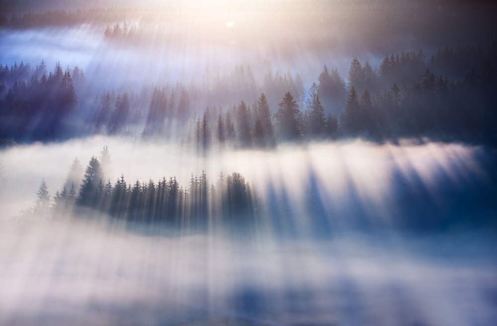 A piece of fine art art photography titled Dream by Marcin Sobas