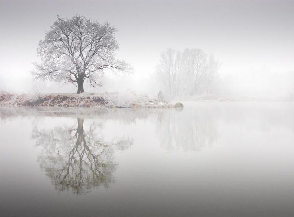 A piece of fine art art photography titled Fog by Jaroslaw Stryjewski