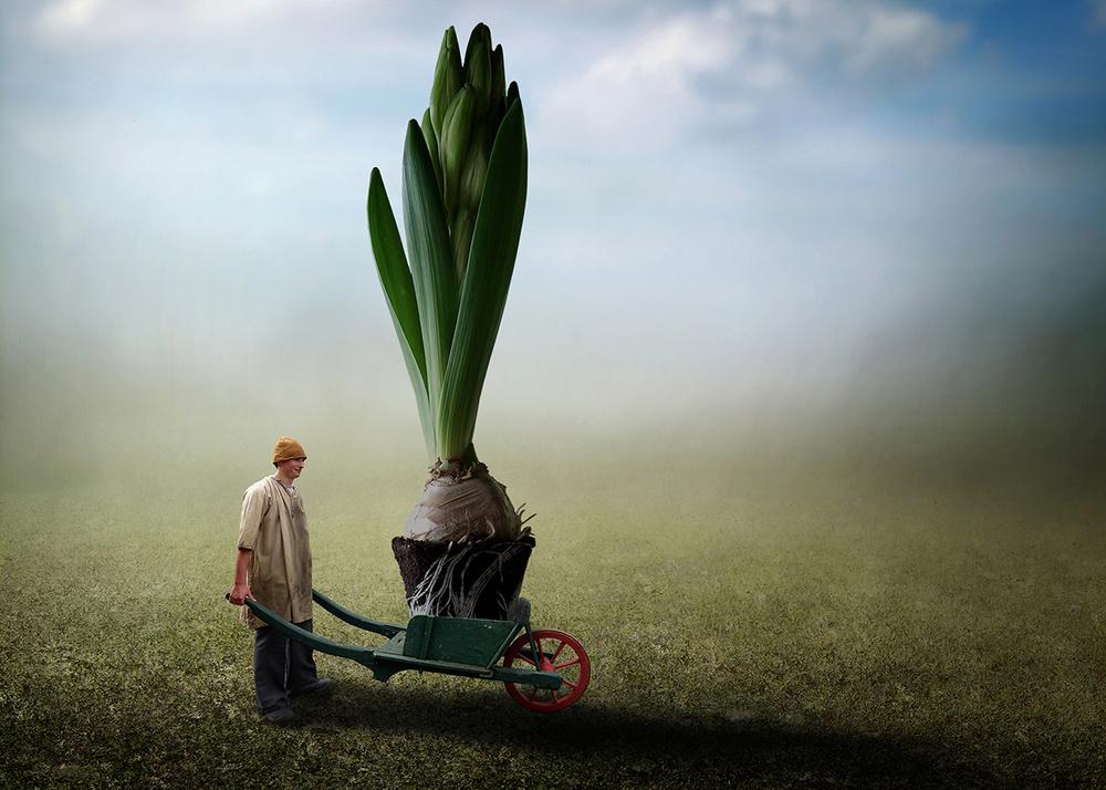 A piece of fine art art photography titled Super Florist by Ben Goossens