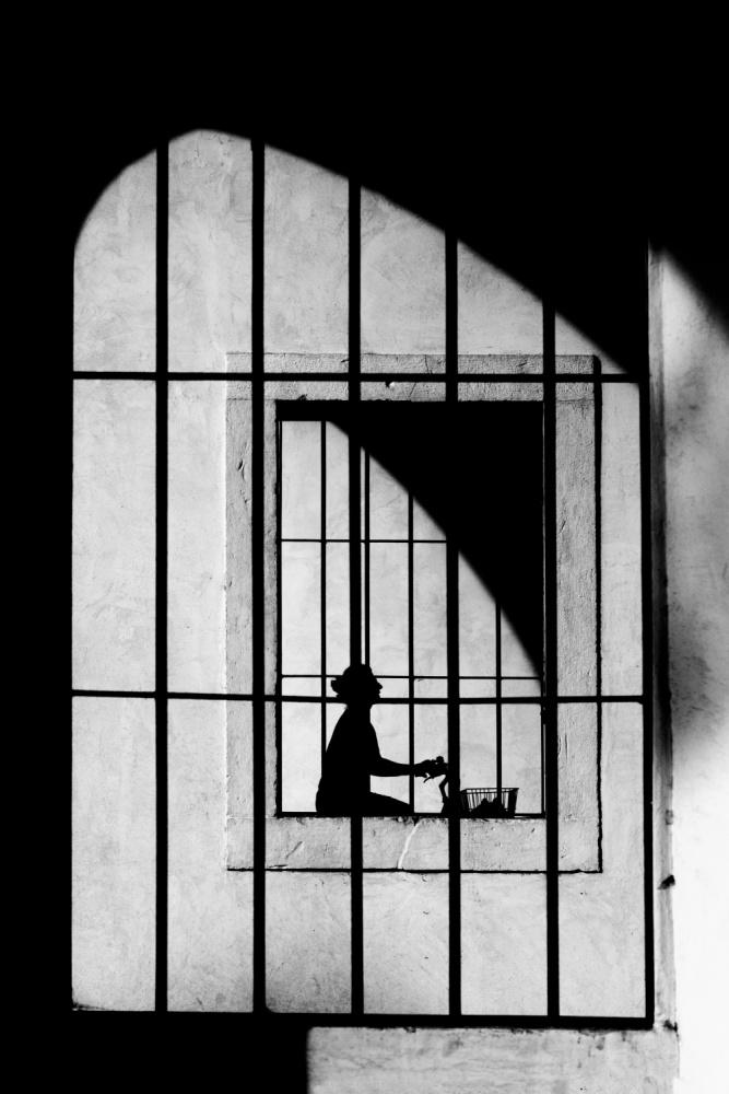 A piece of fine art art photography titled Gabbie by Massimo Della Latta