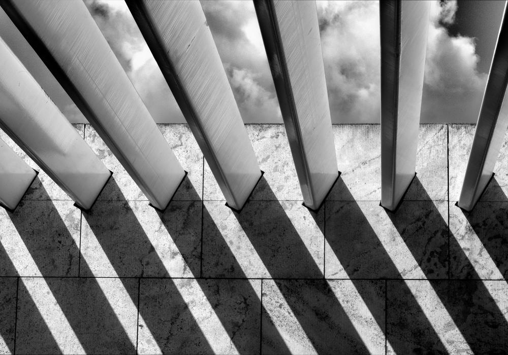A piece of fine art art photography titled Lines by Alida van Zaane