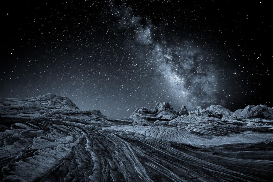 A piece of fine art art photography titled Companions of Darkness by John Fan