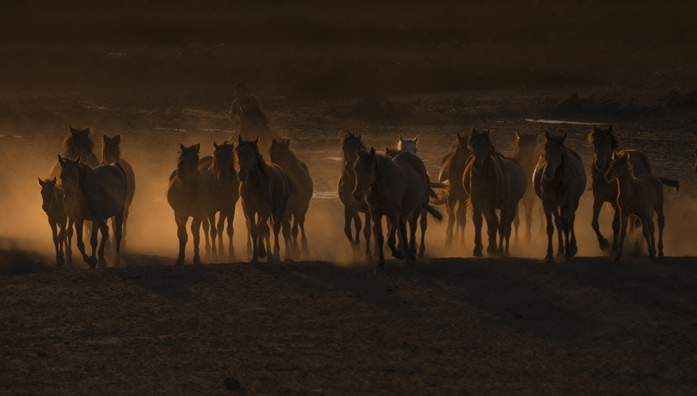A piece of fine art art photography titled Beautiful the Country of Horses / by Ramiz Şahin