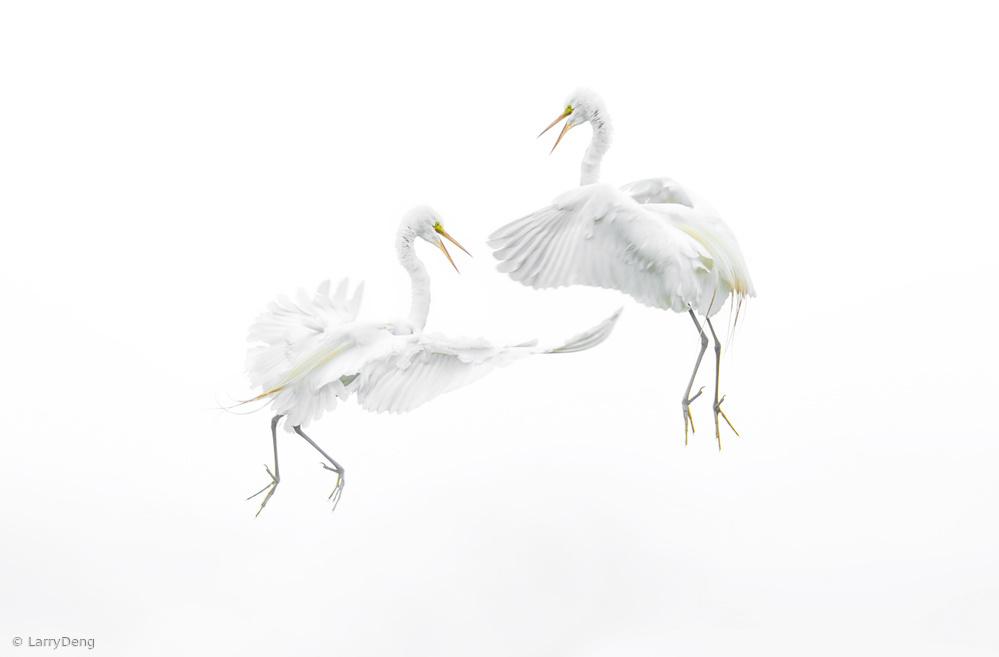 View this piece of fine art photography titled Sky dance by Marek Kiedrowski