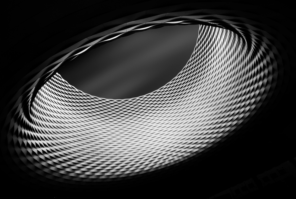 A piece of fine art art photography titled The Ring by Olivier Schwartz
