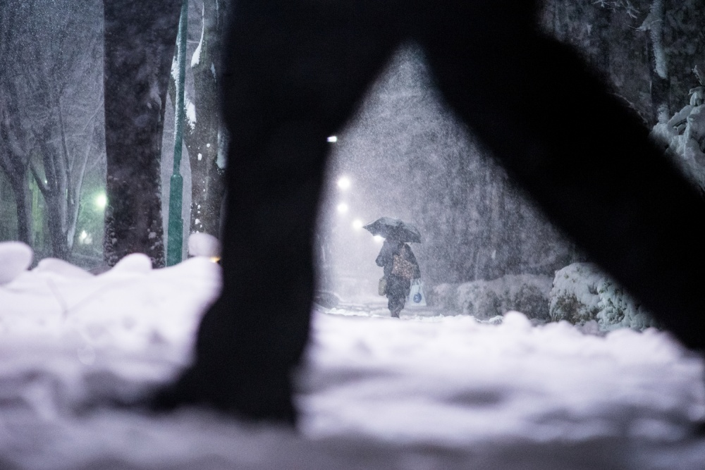 A piece of fine art art photography titled Snow by Kouji Tomihisa