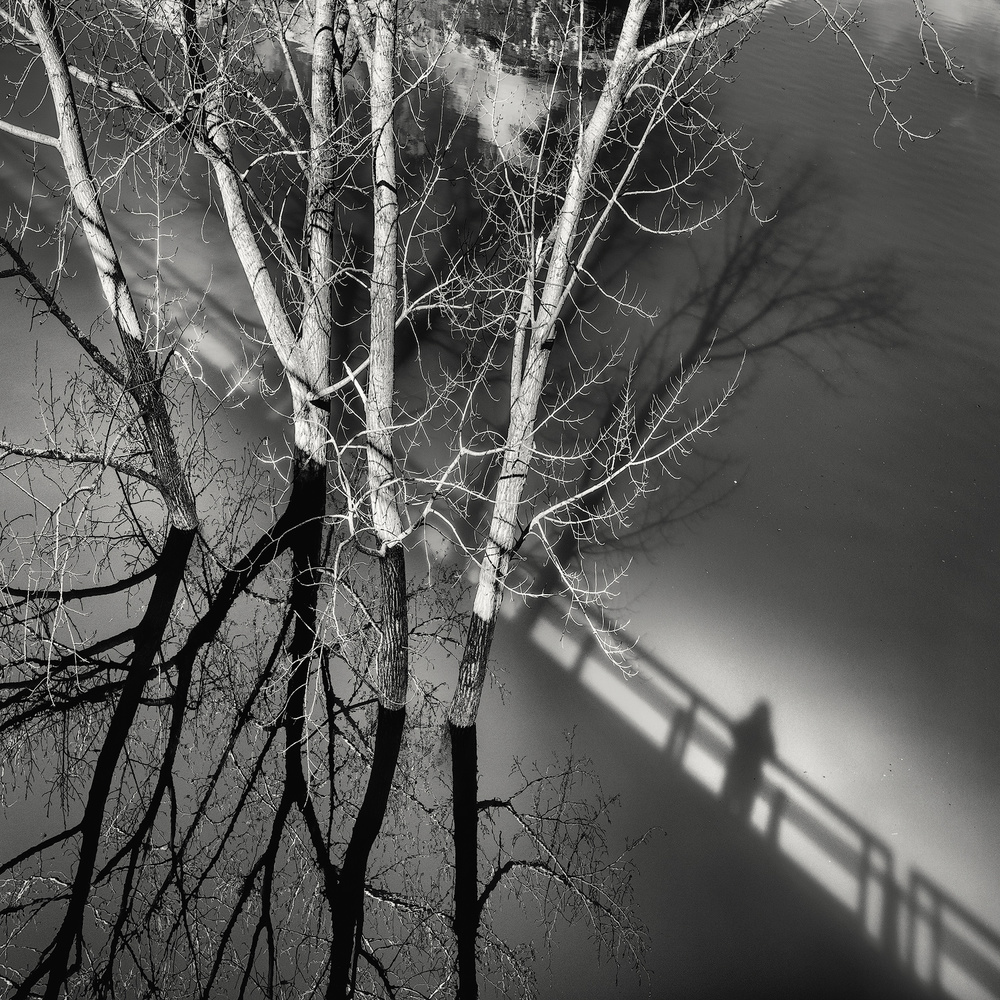 A piece of fine art art photography titled Shadow by Pietrino Di Sebastiano