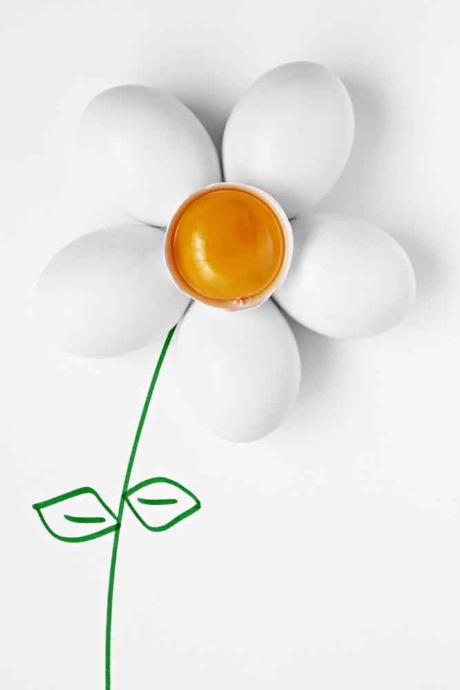 A piece of fine art art photography titled Daisy Eggs by Ruben Perez (fris)
