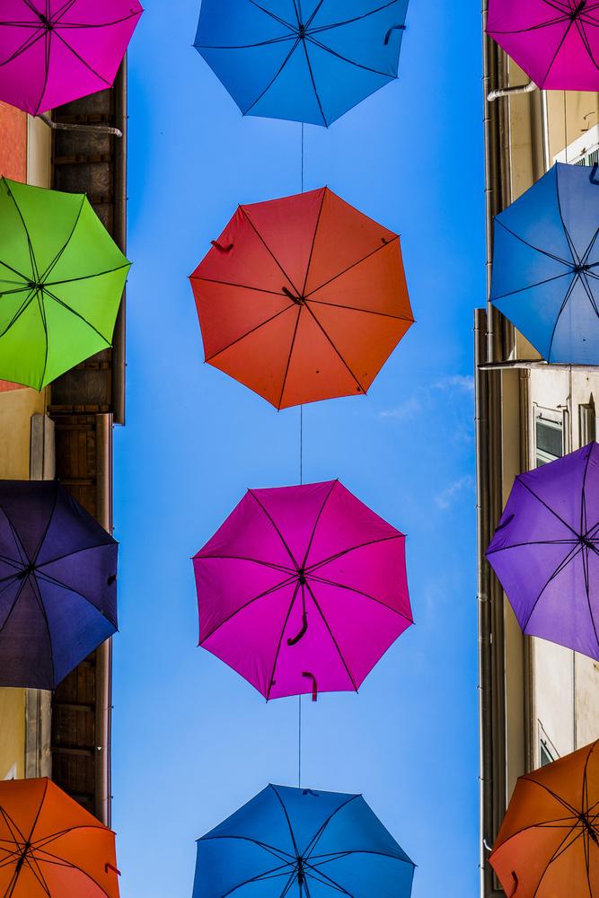 A Sky Full of Umbrellas