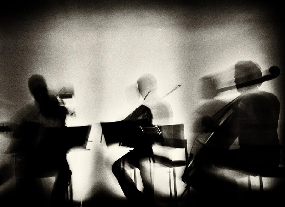 A piece of fine art art photography titled Waves of Music by Mirela Momanu