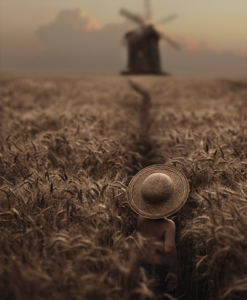 A piece of fine art art photography titled The Boy In the Field by David Dubnitskiy