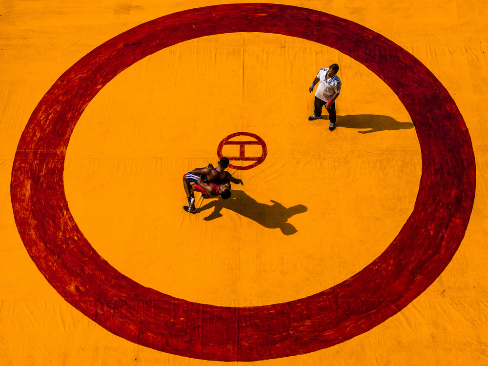 Wrestle in Circle of Yellow