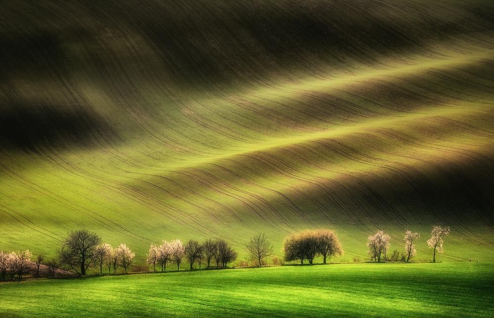 A piece of fine art art photography titled Moravian Fields by Piotr Krol (Bax)
