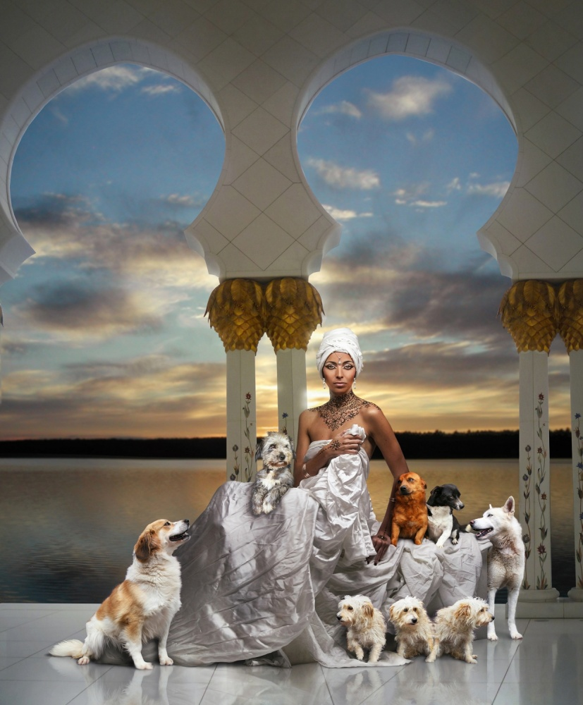 A piece of fine art art photography titled Elô & Her Dogs by DDiArte