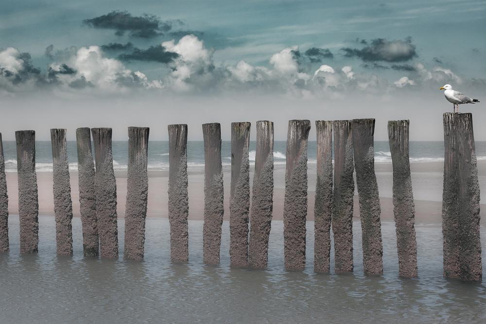 A piece of fine art art photography titled Beach Bars by Bernardine de Laat
