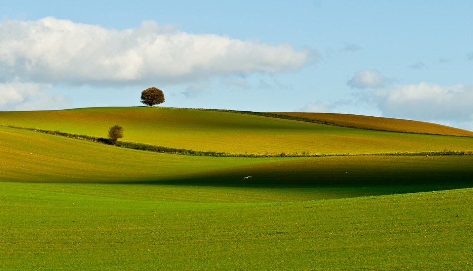 A piece of fine art art photography titled Shadows and Landscape by Lars Klottrup