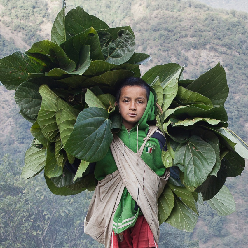 A piece of fine art art photography titled Gurung Boy by Björn Billing