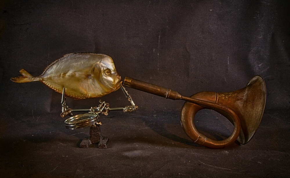 A piece of fine art art photography titled Fish and Horn by Brig Barkow