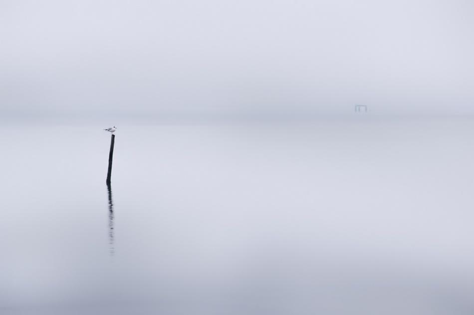 A piece of fine art art photography titled Station by Sandi Gorkic