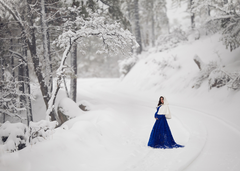 A piece of fine art art photography titled Winter Enchantment by Lisa Holloway