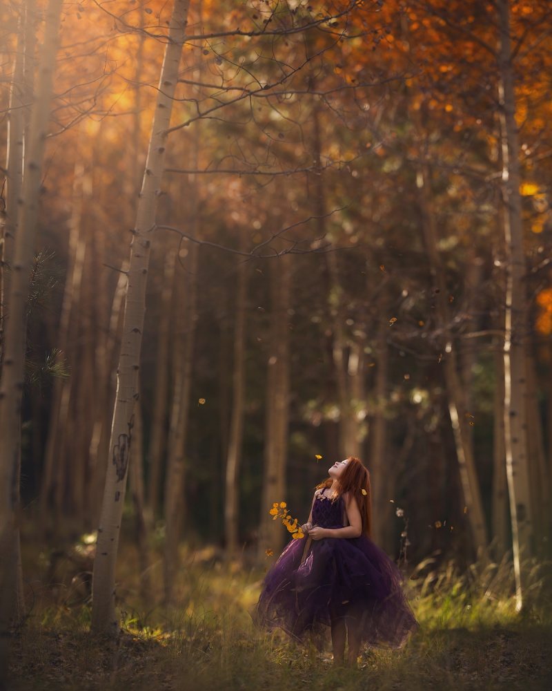 A piece of fine art art photography titled Autumn Glory by Lisa Holloway