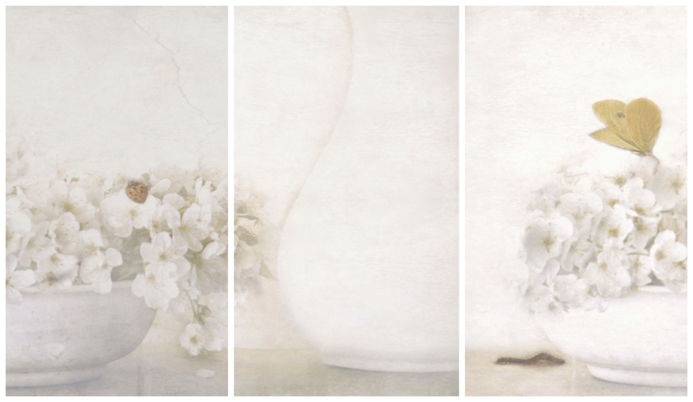 A piece of fine art art photography titled Summertime (triptych) by Delphine Devos