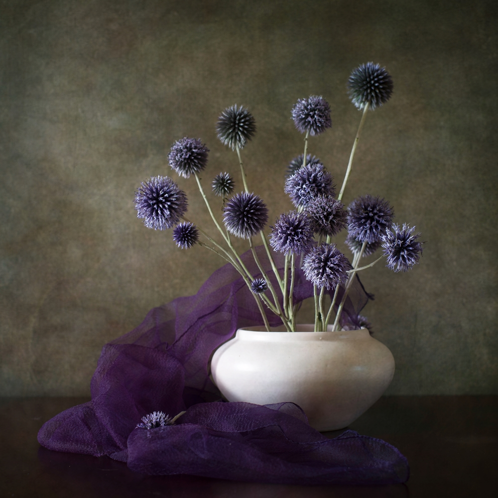 View this piece of fine art photography titled still life with purple by Anna Petina