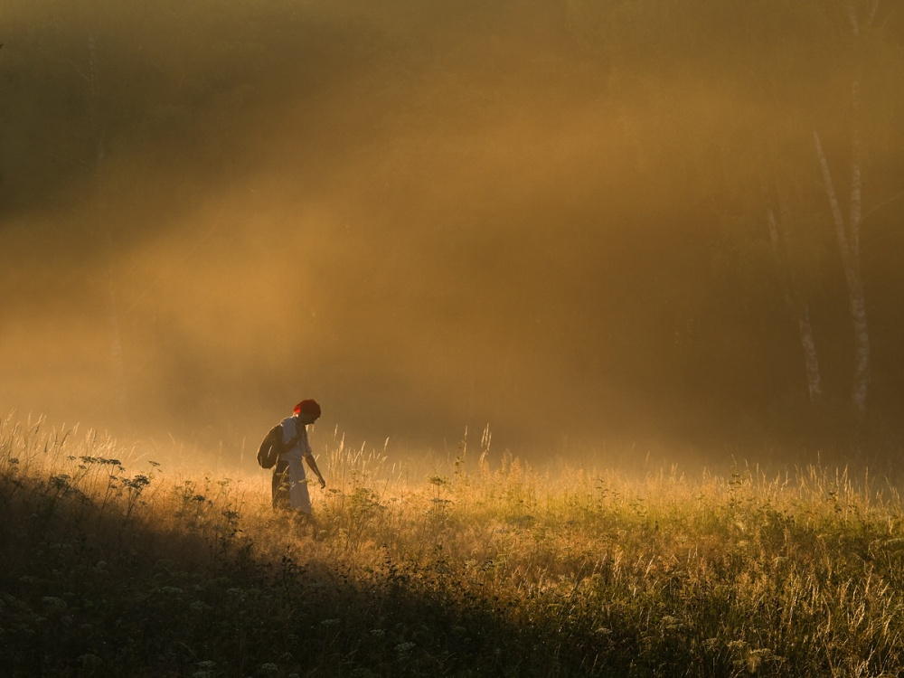 A piece of fine art art photography titled Rural Indecision by Leszek Paradowski