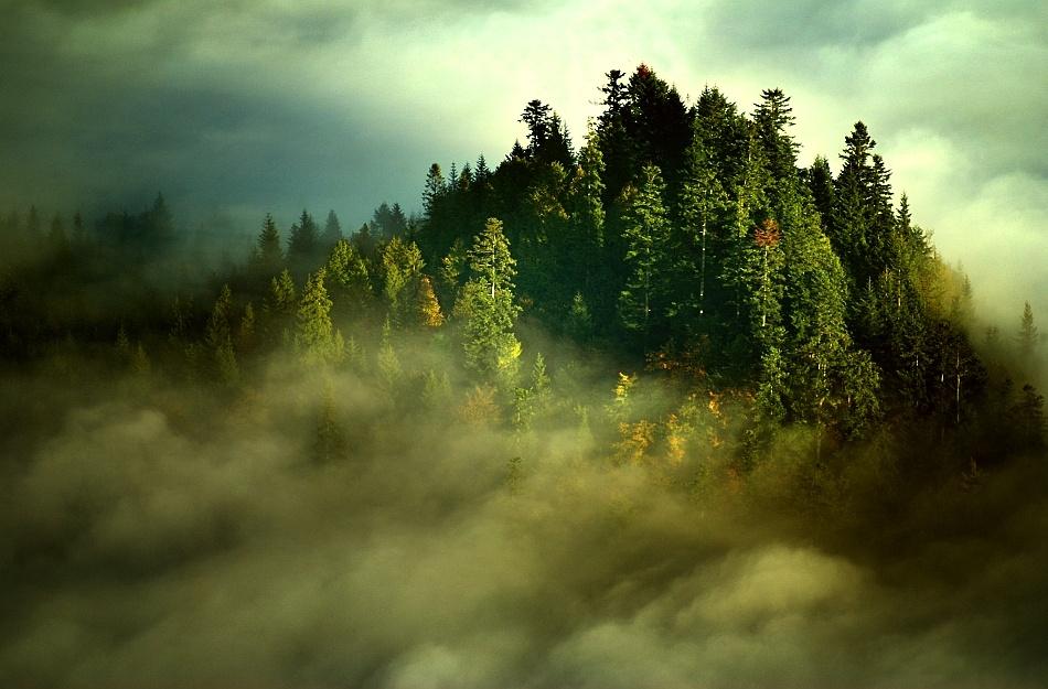 A piece of fine art art photography titled Island by Janusz Wanczyk