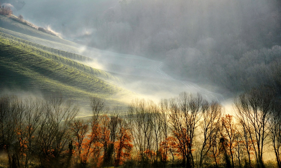 A piece of fine art art photography titled Morning Haze by Barbara