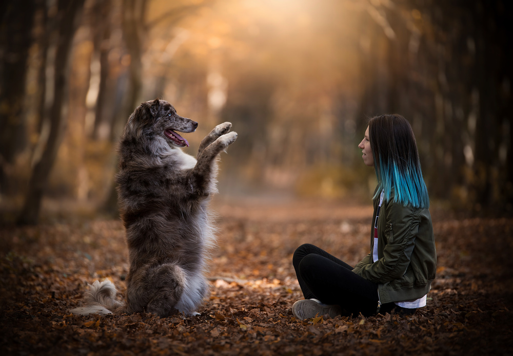 "A piece of fine art art photography titled ""Dogs Do Speak, but Only to Those Who Know How to Listen"" by Dejana MŠ"