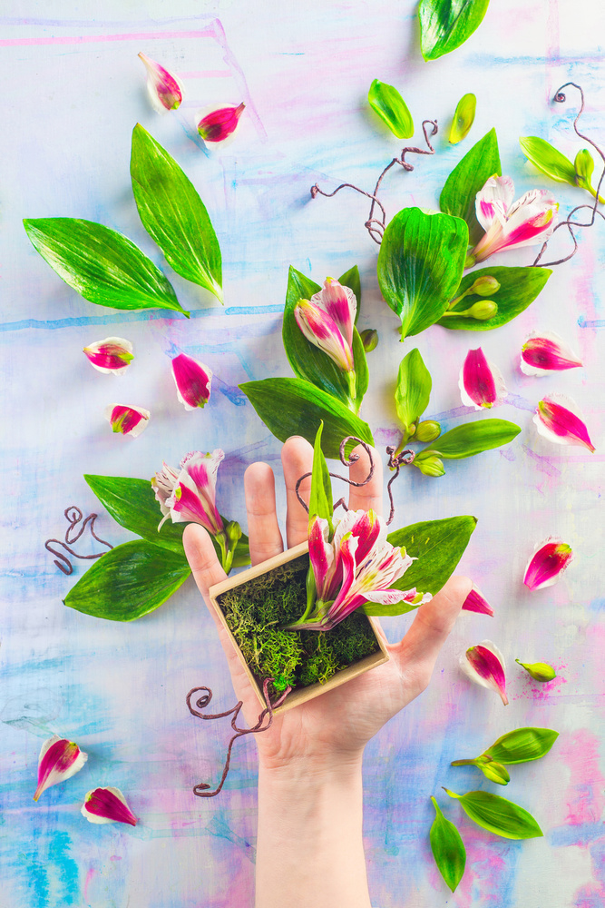 A piece of fine art art photography titled Hand Full of Spring by Dina Belenko