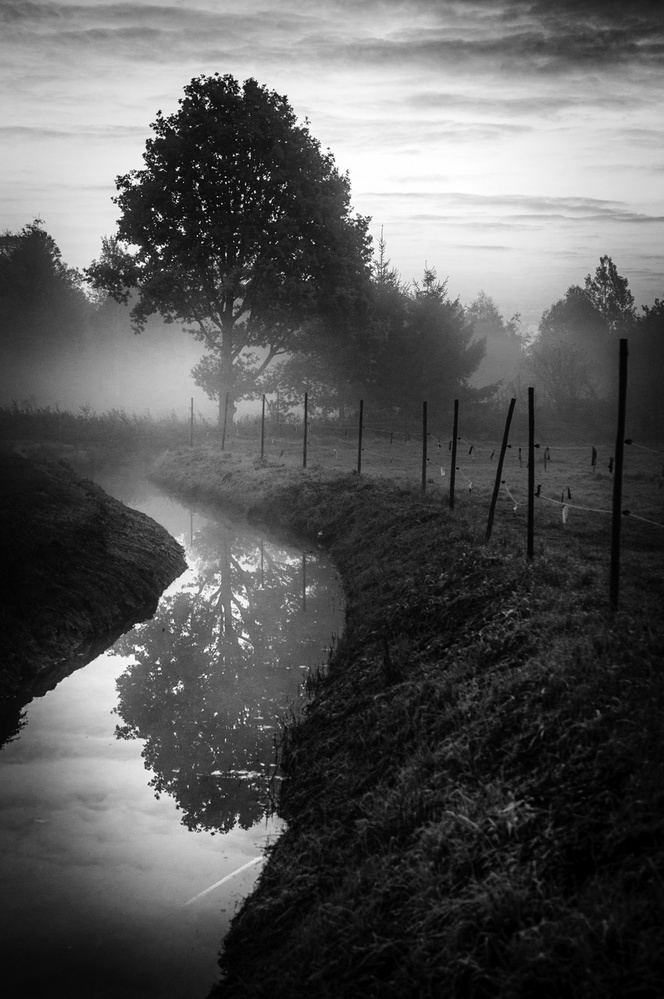 A piece of fine art art photography titled Misty Morning by Eddy Verloes