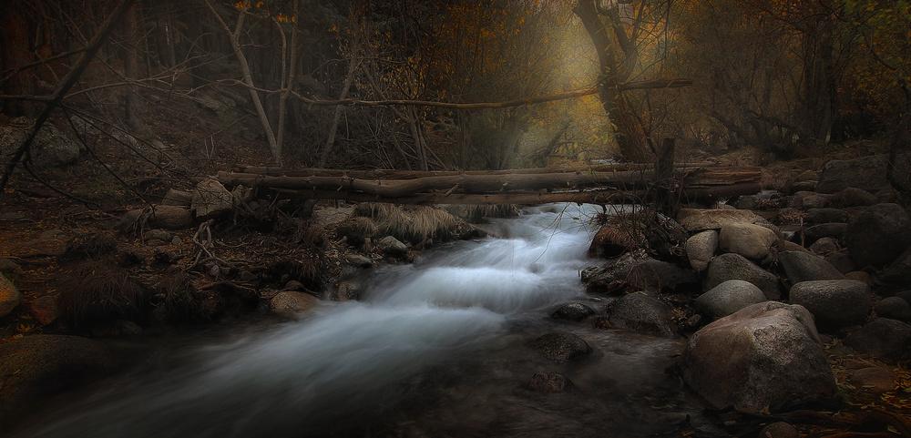 A piece of fine art art photography titled Brittle Bridge by Amador Funes
