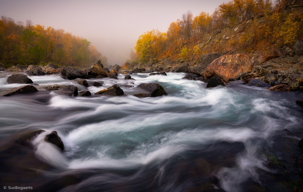 Signaldalelva river