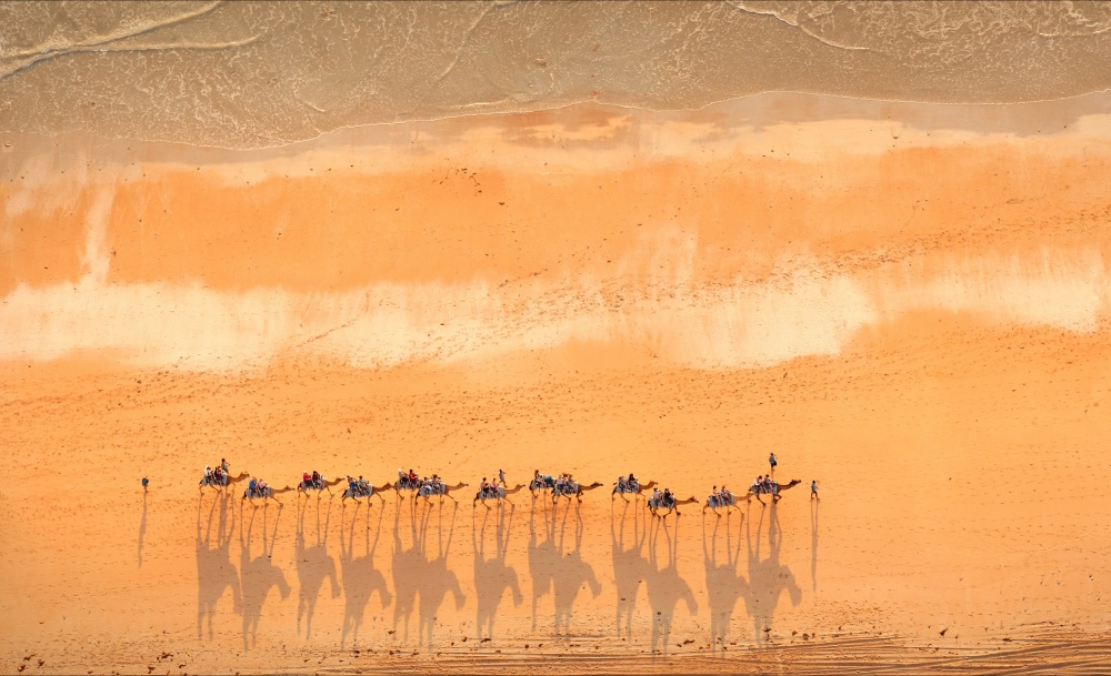 A piece of fine art art photography titled Cable Beach Camel Train, Broome WA by Stuart Westmore