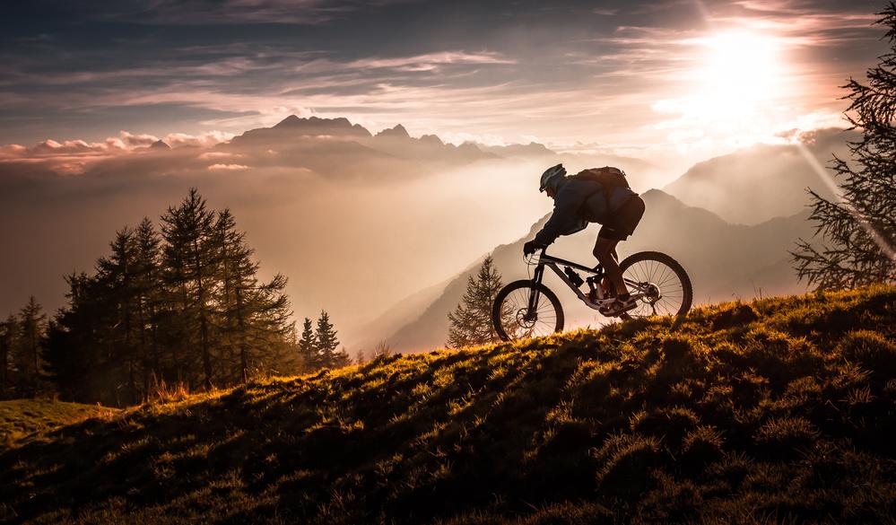 A piece of fine art art photography titled Golden Hour Biking by Sandi Bertoncelj